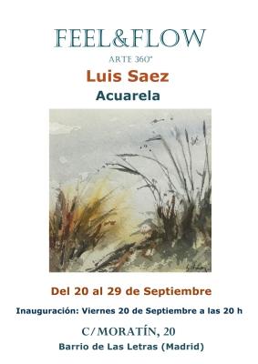 CARTEL LUIS SAEZ